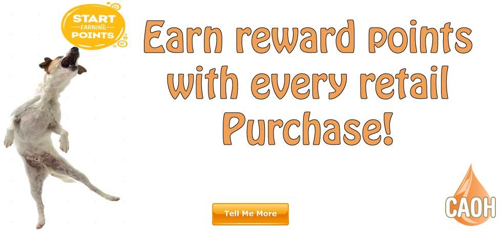CAOH.COM Home Page Promotions