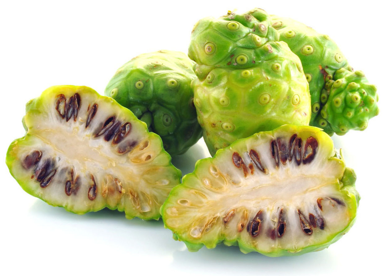 Noni and Noni Juice History and Uses