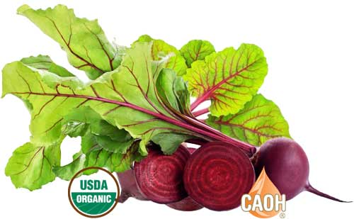 Organic Beetroot Juice from CAOH