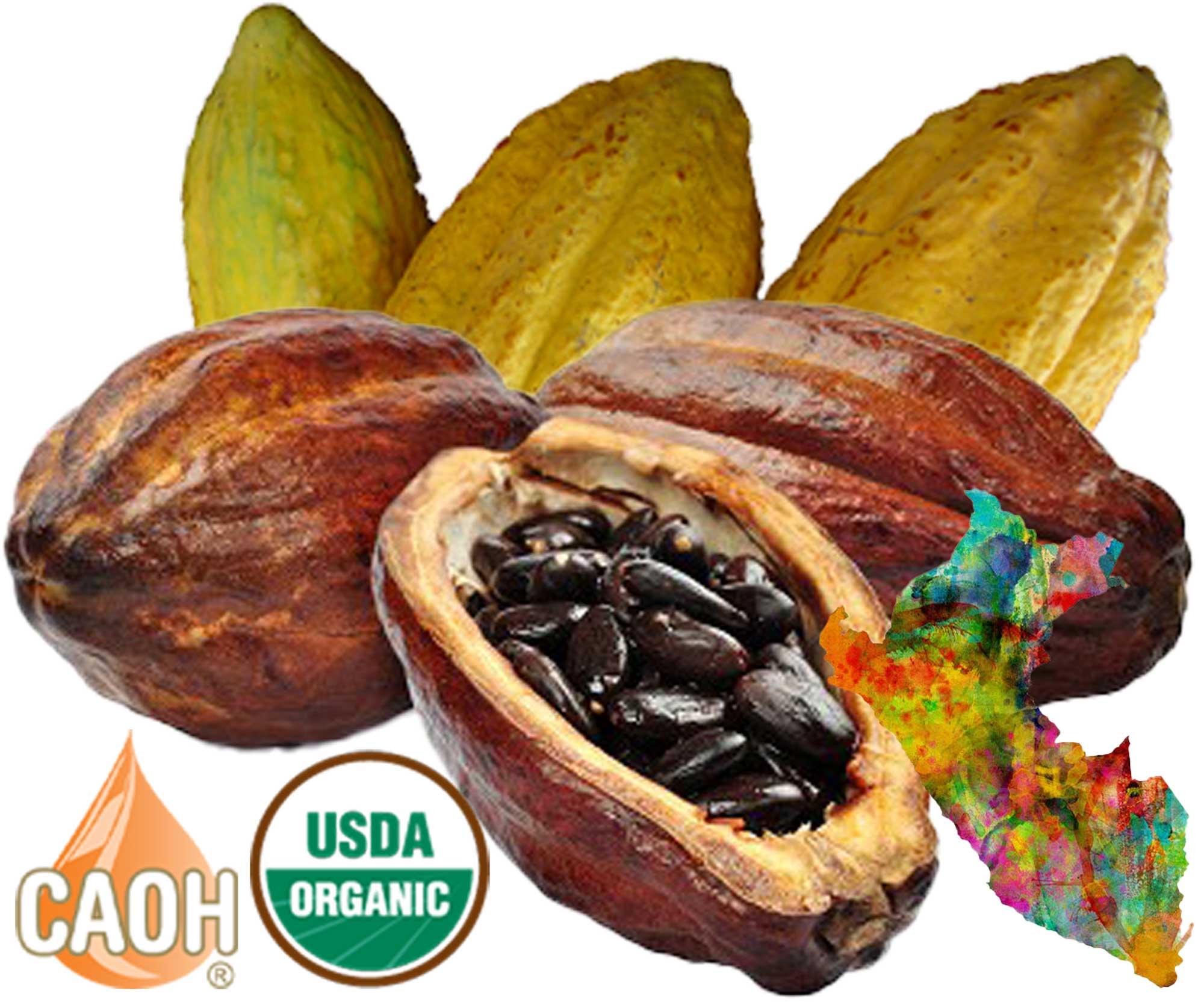 Organic Cacao Oil by CAOH.com