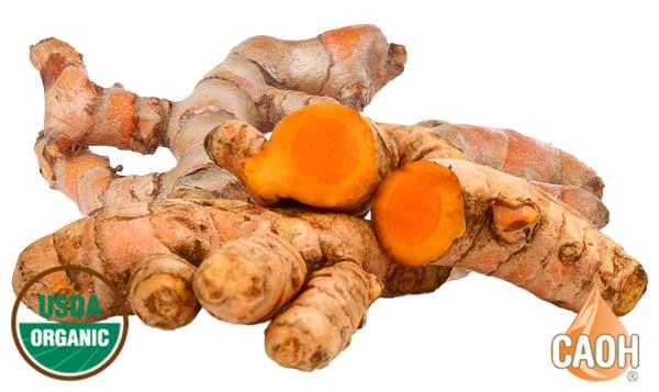 Organic Turmeric Curcuma longa root Oil