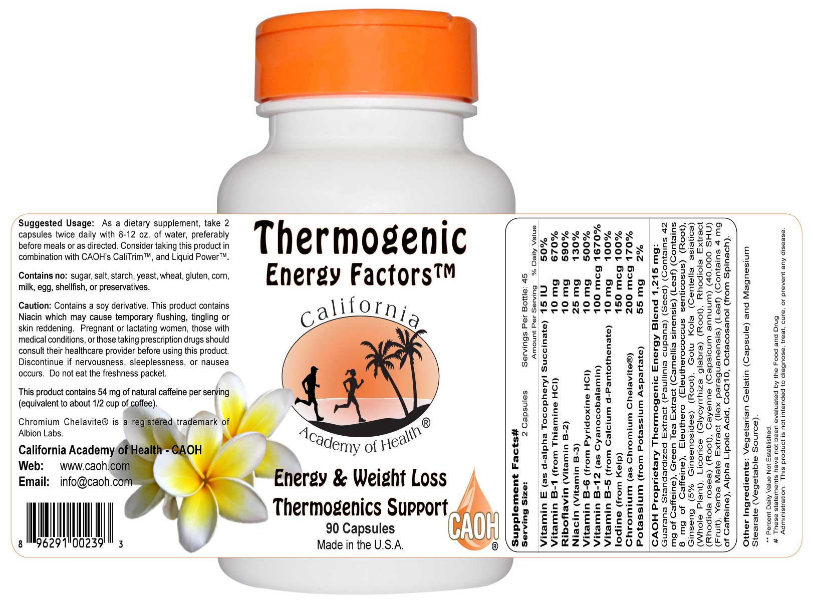 Thermogenic Energy Factors 90 Capsules